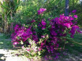 Aracataca - la casita del tigre, Dique Luján