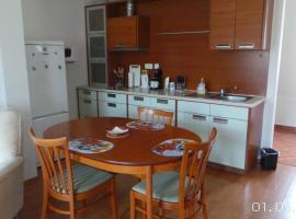 Apartment Petřín