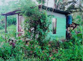 Toucans Tiny home, Agujas