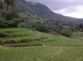 The village, Atanwala, Reverston, Matale