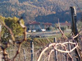 Agriturismo Il Trebbio, Pelago