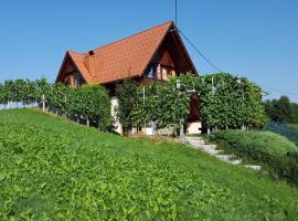 Vineyard Cottage Berus, Dolenja Vas pri Mirni Peči