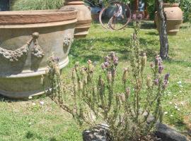 I Due Frassini, Montespertoli