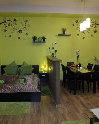 City Lounge Apartment