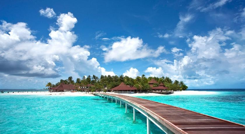the island maldives