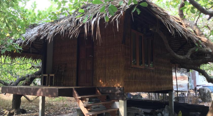 cashew nut bungalow