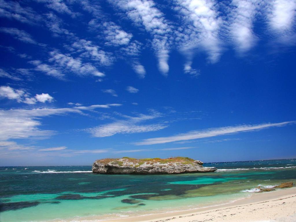 Image result for rottnest island