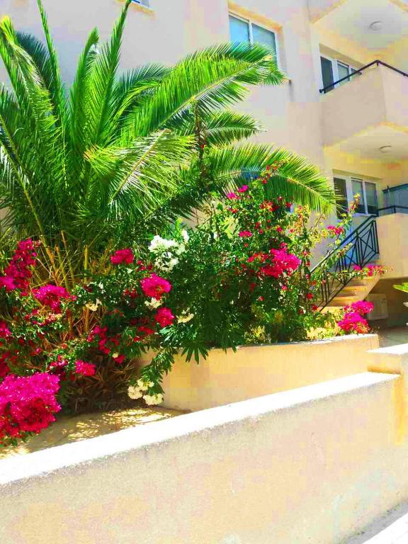 Apartment Melania Gardens Block 3, Paphos City, Cyprus - Booking.com