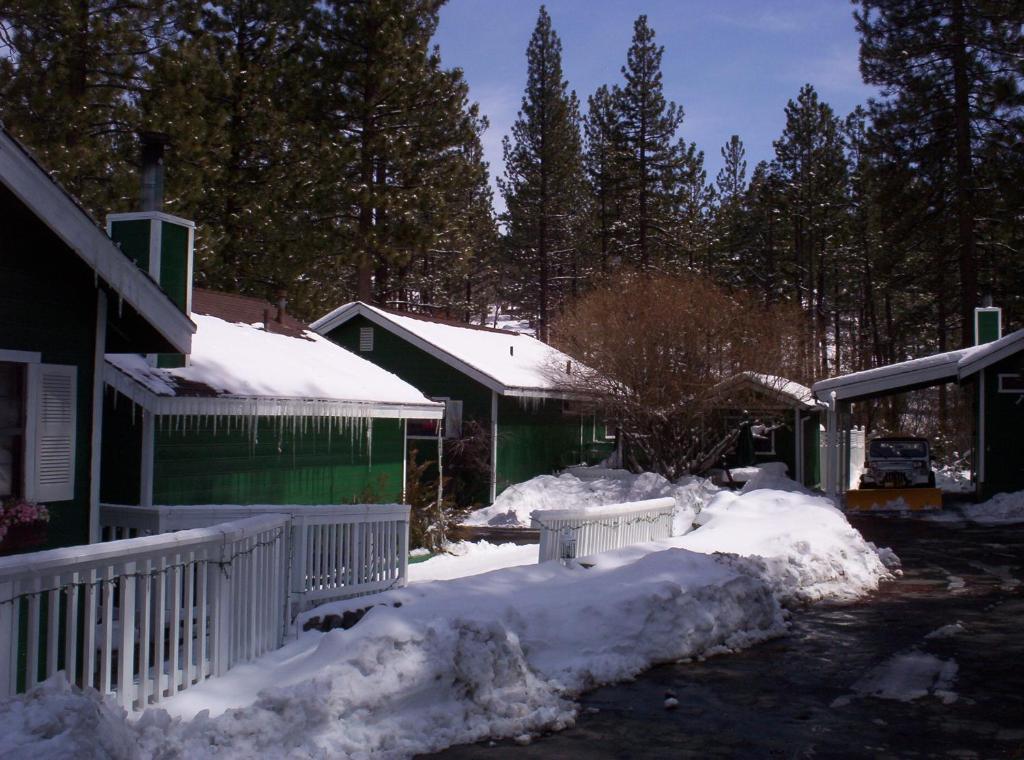 cabins vacation bookerville cabin lake bedroom california bear centrally main com cozy located resort studio big in rental vacationrentalpropertydetails
