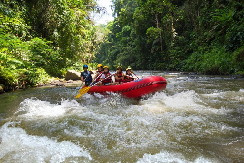 rafting Sungai Ayung