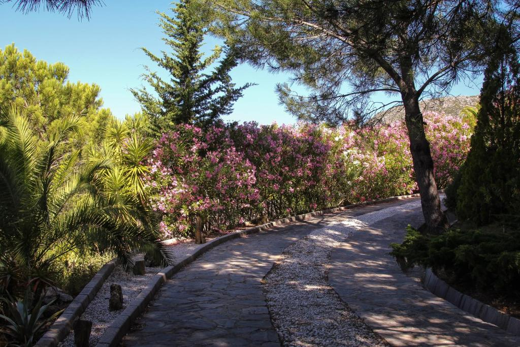 hotels with  charm in casares  31