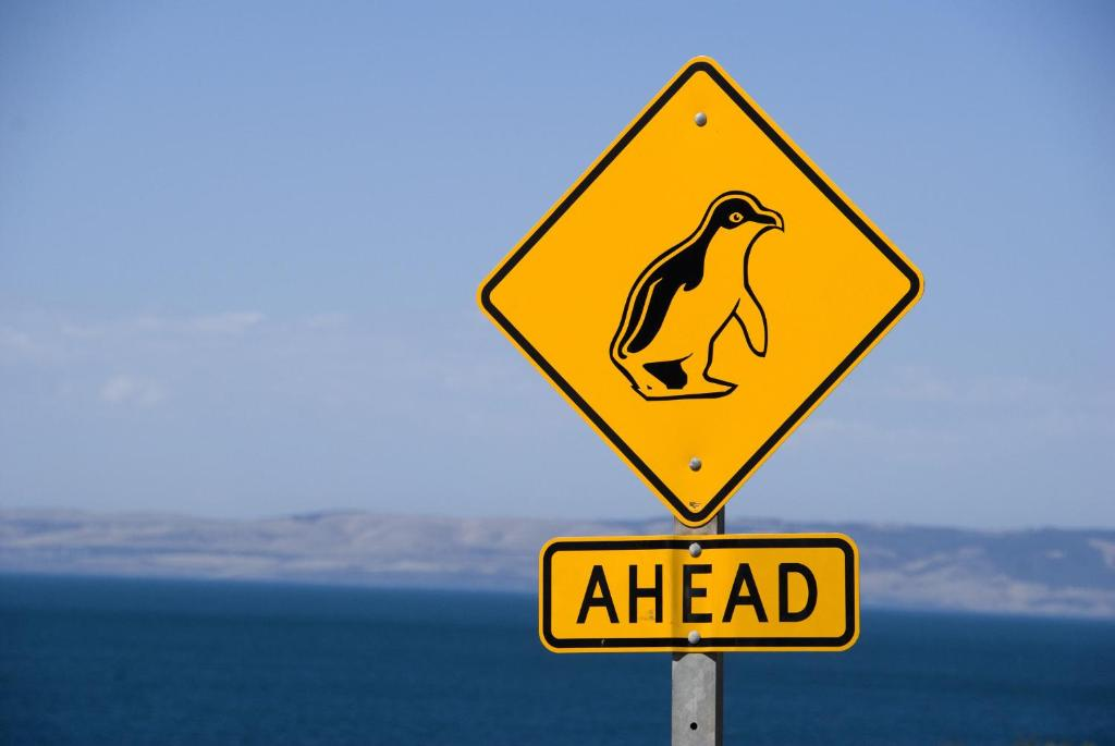 Kangaroo Island Seafront