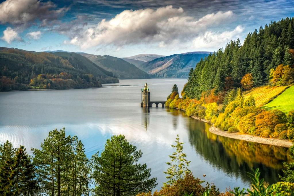 Dog Walks in North Wales - Lake Vyrnwy in Powys