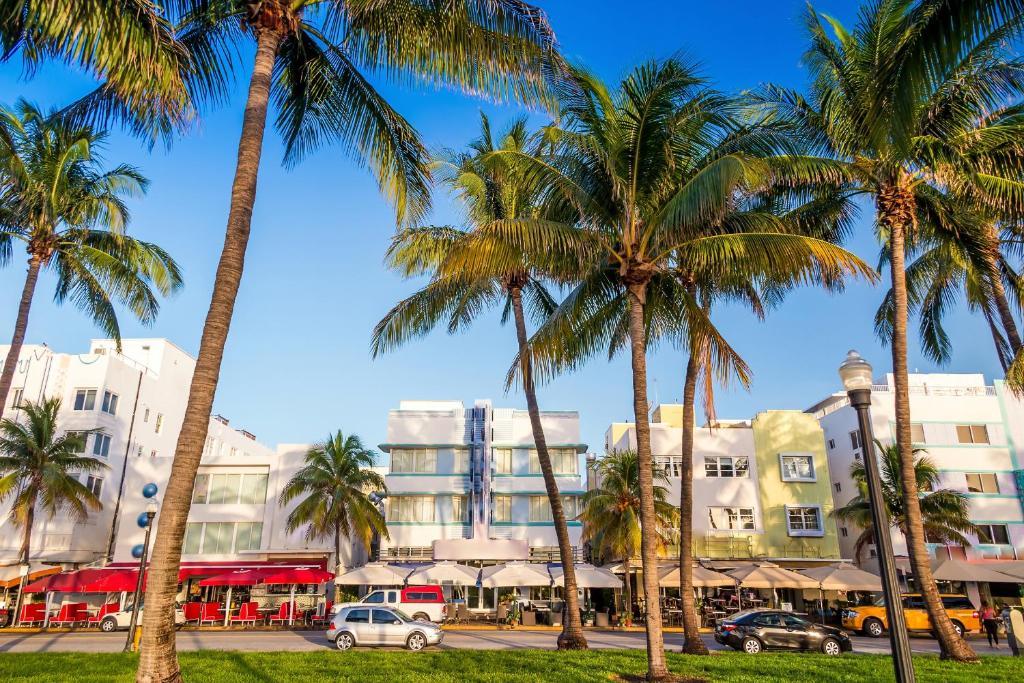 Mango S Tropical Cafe Miami Beach Fl  Usa