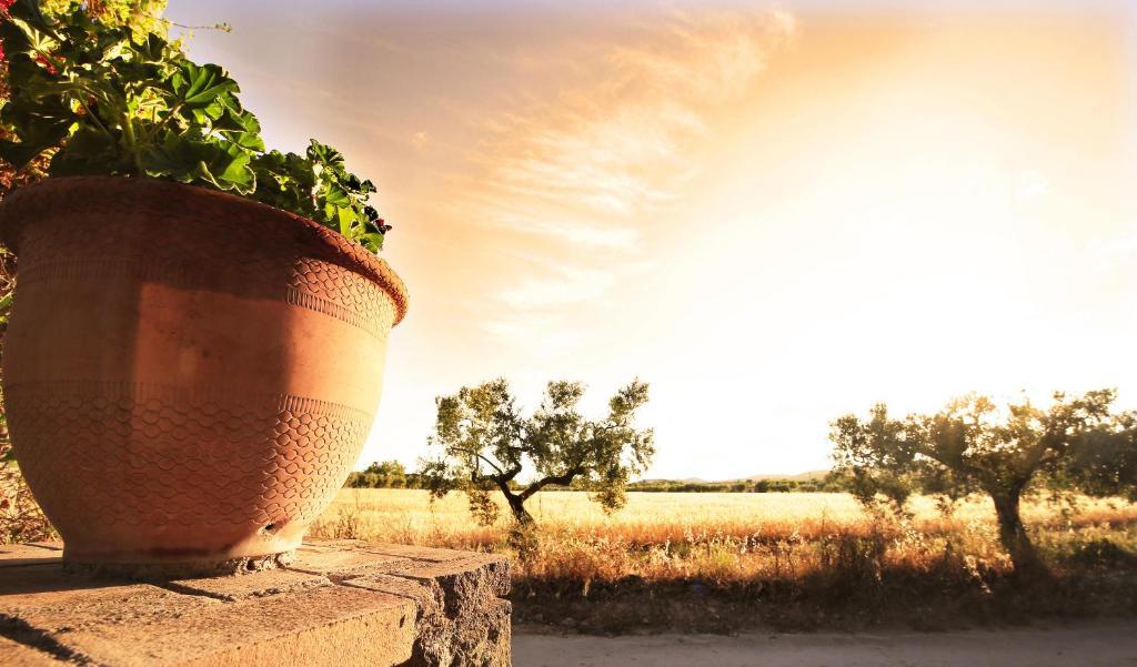 casas rurales con encanto en cataluña  133