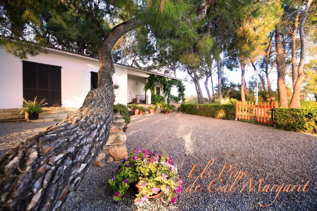 casas rurales con encanto en cataluña  129