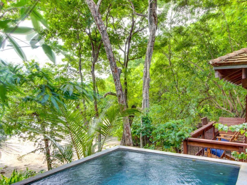 luxury tree house resort. fotografie z fotogalerie ubytování luxury tree house resort