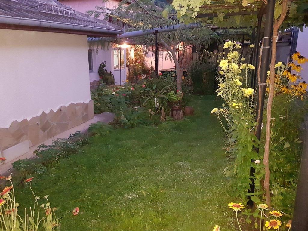 Къща за гости Nenkovi Guest house - Трявна