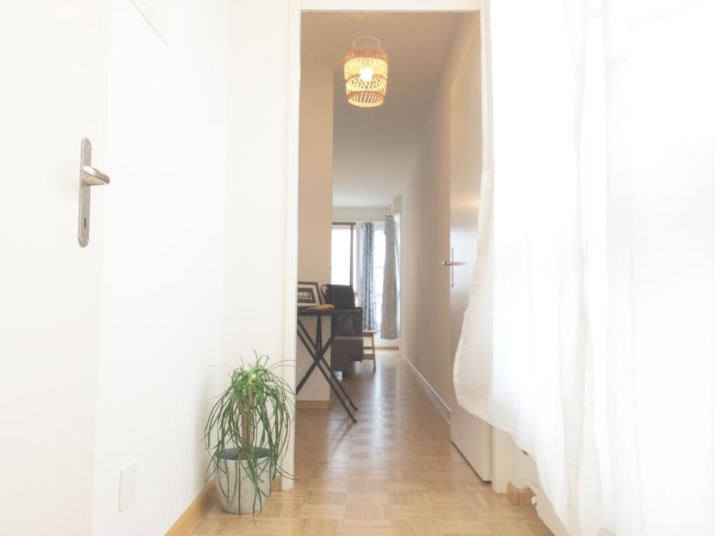 Apartment In Swiss Home - Downtown Rhine, Basel, Switzerland ...