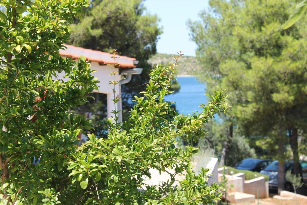 Apartment Mediterranean garden on the beach, Grebaštica, Croatia ...