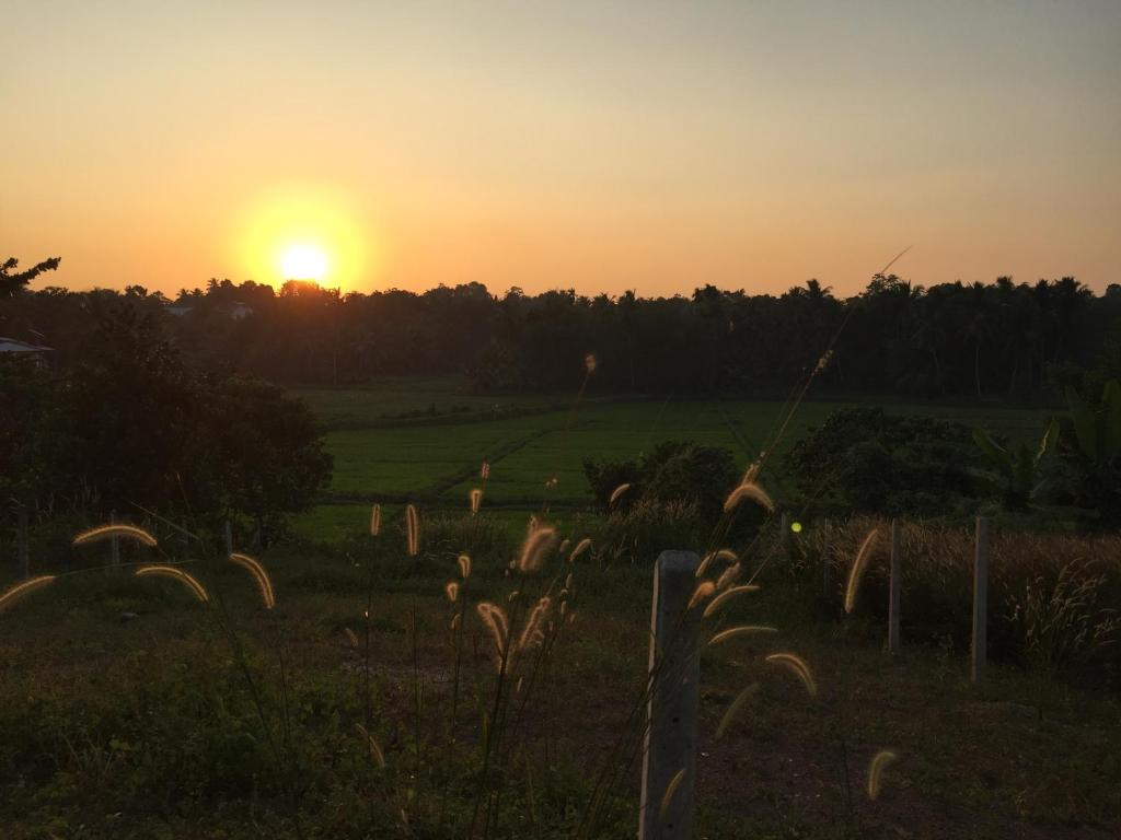 Homagama Paddy Villa, Godagama, Sri Lanka - Booking com