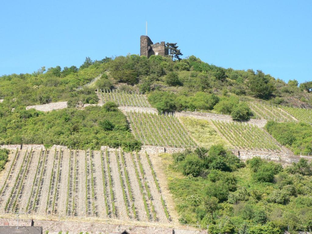 Gästehaus Cheval Blanc