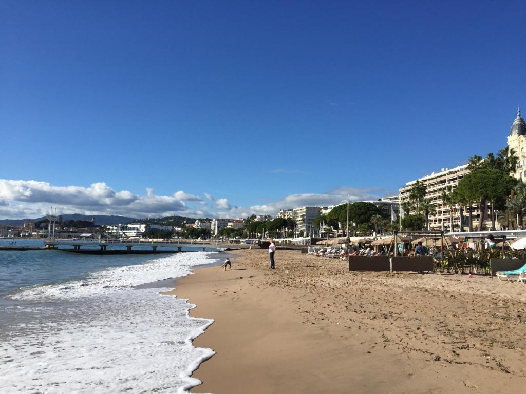Apartment Palm Beach Cannes  France