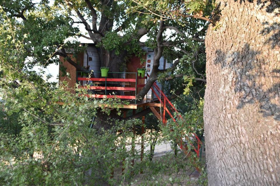Casa sull albero per bambini top casa sull albero per bambini with casa sull albero per bambini - Costruire casa sull albero bambini ...