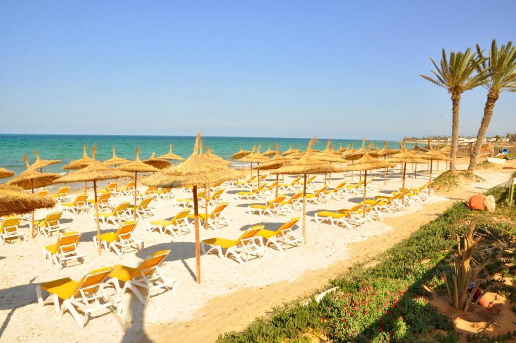 сафира палмс тунис фото