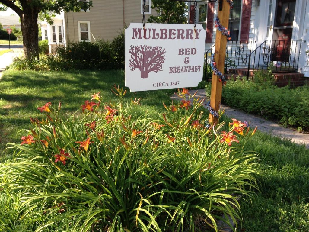 Mulberry Bed & Breakfast, Wareham, MA - Booking.com