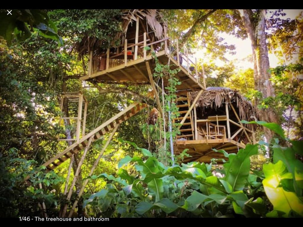 vacation home jungle treehouse by the sea paunch panama. Black Bedroom Furniture Sets. Home Design Ideas
