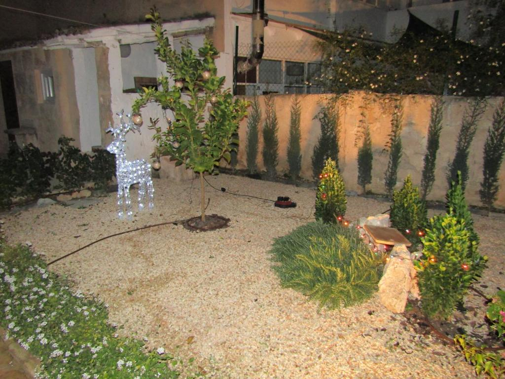 Vacation Home Garden in Sta. Catalina, Palma de Mallorca, Spain ...