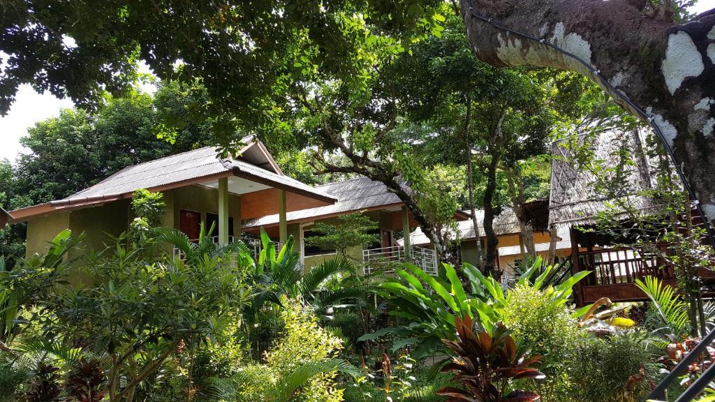 khao sok jungle huts resort khao sok national park thailand