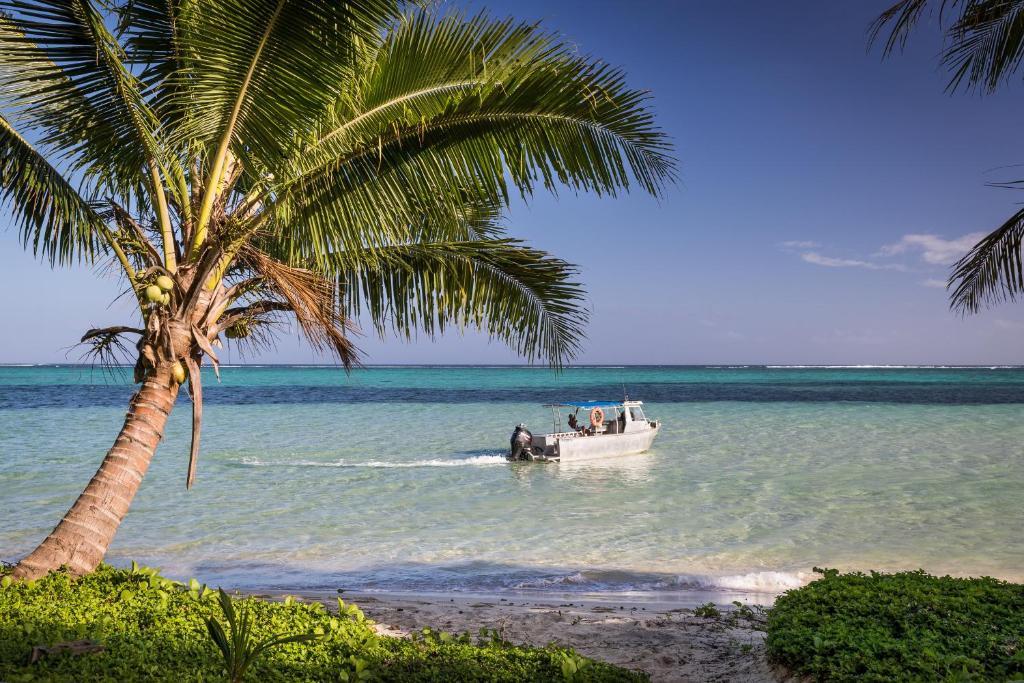 Fidži online upoznavanje