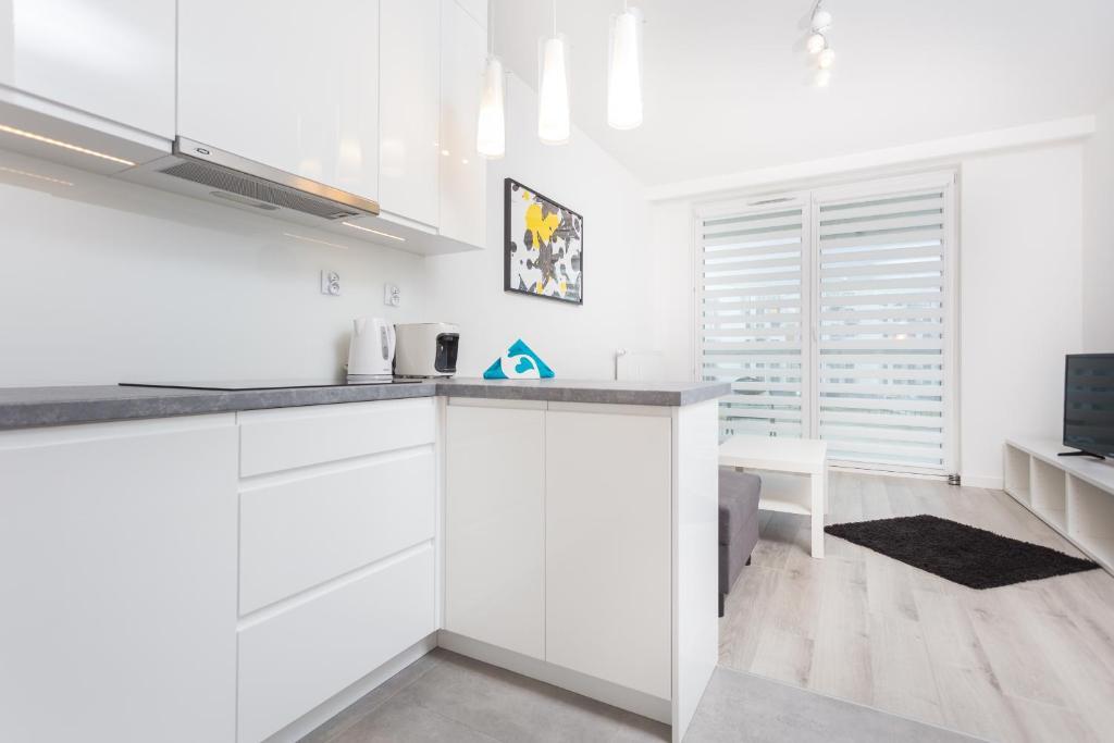 Virtuvė arba virtuvėlė apgyvendinimo įstaigoje InPoint Tauron Arena Apartment