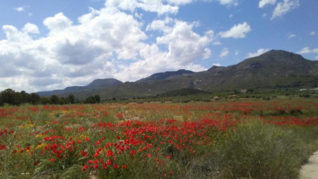Vacation Home Casa La Espiga, Moratalla, Spain - Booking.com