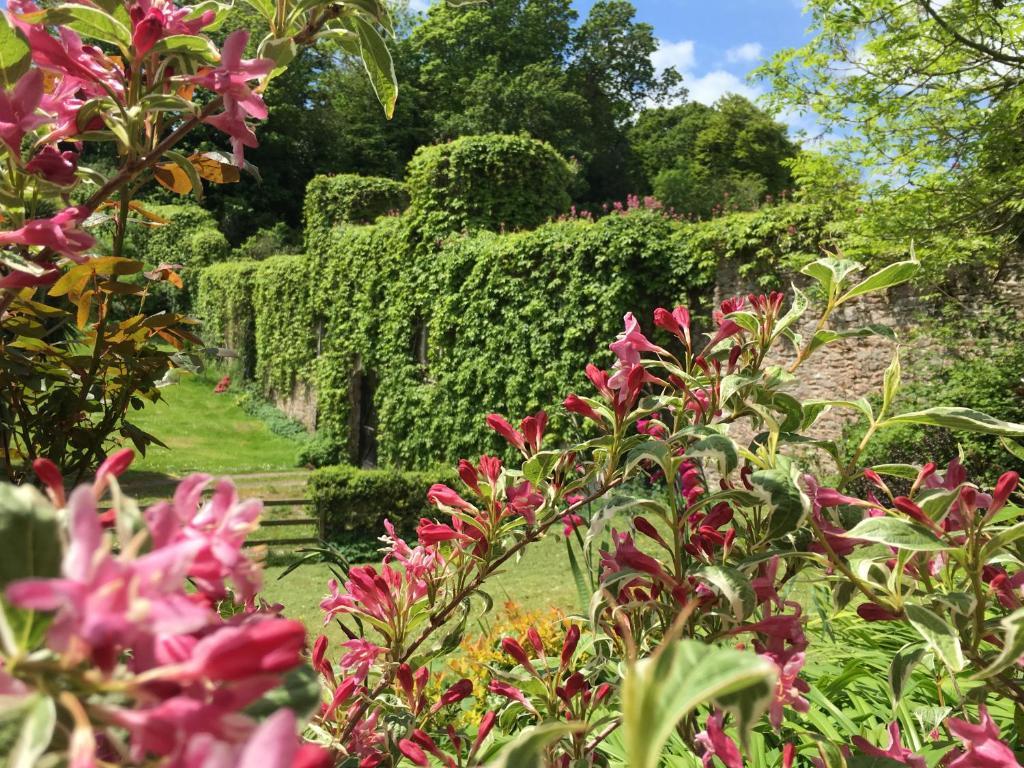 The Kitchen Garden Cottages Torpoint Updated 2019 Prices