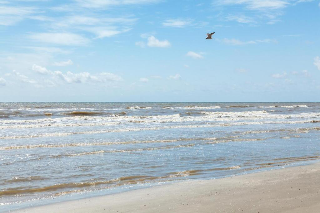 Pape's Perch, Galveston – Updated 2019 Prices
