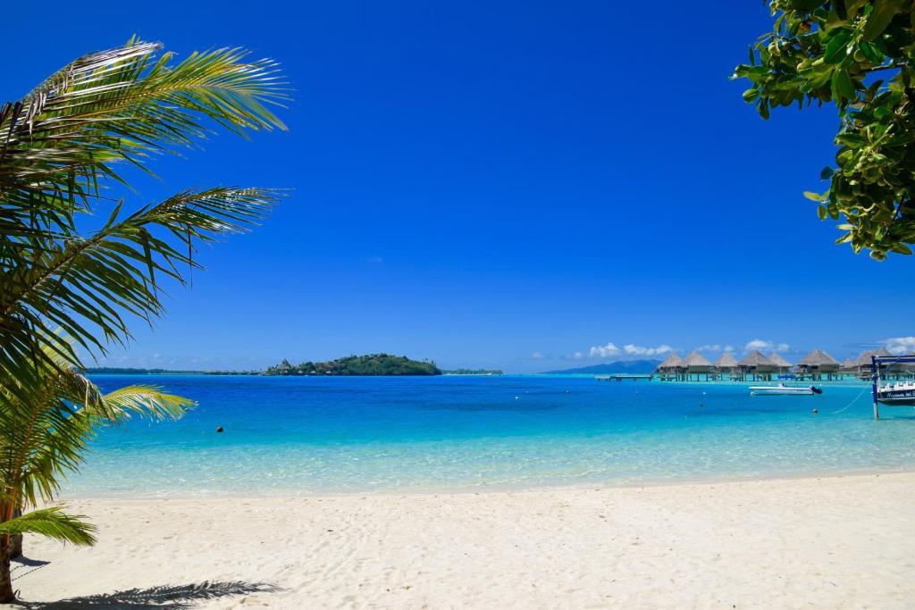Village Temanuata, Bora Bora – Prezzi aggiornati per il 2018