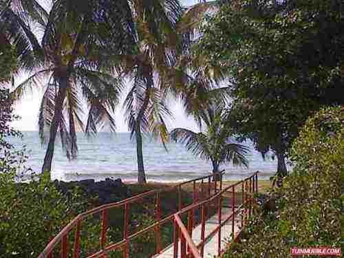 Apartments In Altagracia Margarita Island