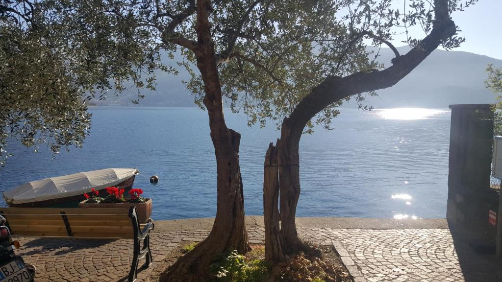 Appartamento La Terrazza sul Lago (Italia Sarnico) - Booking.com