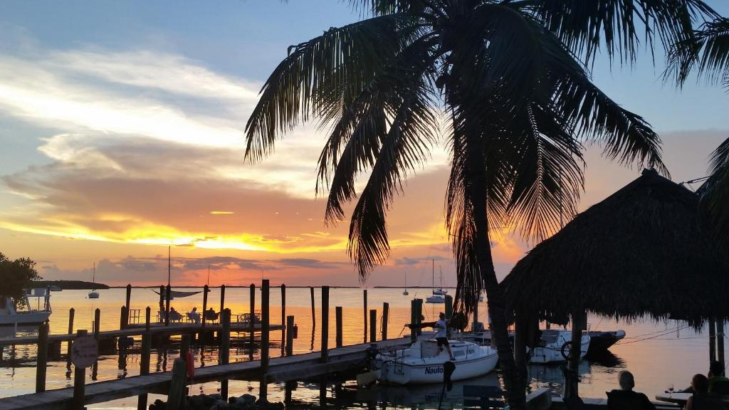 key largo cottages fl booking com rh booking com key largo cottages reviews key largo cottages reviews