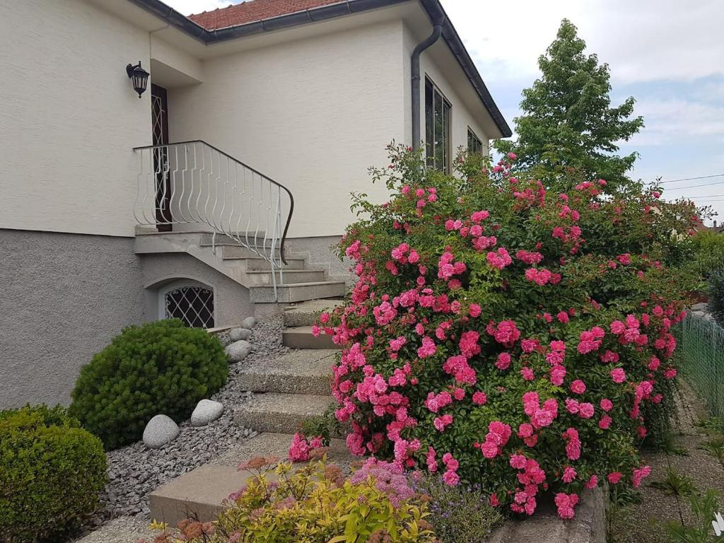 Apartments In Ostwald Alsace