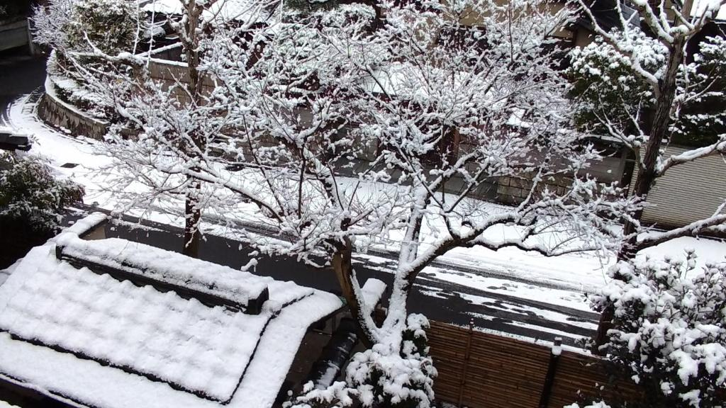 Kinkaku during the winter