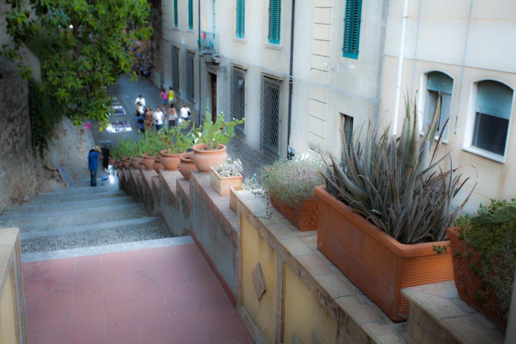 Dietro La Noce Apartment