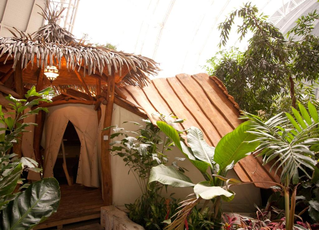tropical island premium zelt