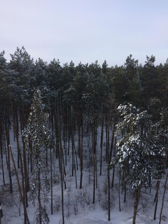 Гагарина 47 зимой