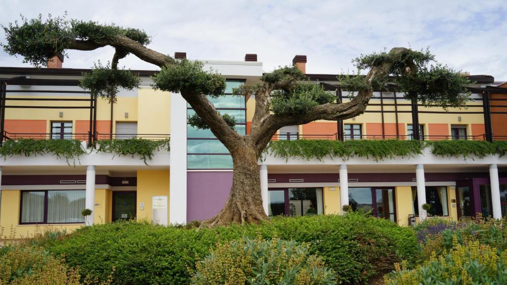 Lavanderia Bagnoli : Domus hotel bagnoli del trigno u2013 prezzi aggiornati per il 2019