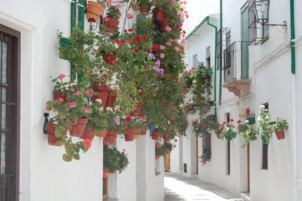 boutique hotels in córdoba  41
