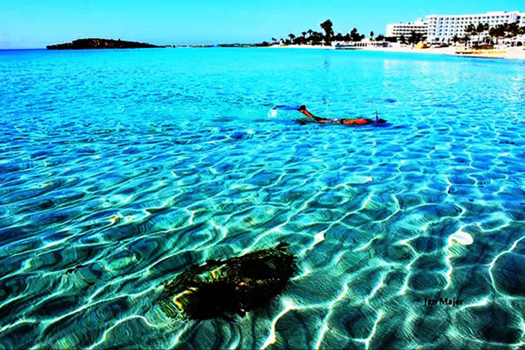 Cyprus: nightlife and clubs of Ayia Napa and …